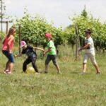 Jeux sur l'herbe