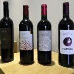 Belles bouteilles Gaillac rouge