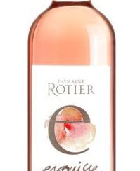 Esquisse rosé 2020