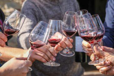 Vos vins de Gaillac bios du Domaine Rotier à domicile sans frais de port !